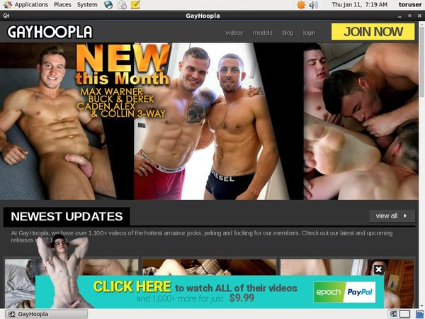 Sign Up For Gay Hoopla