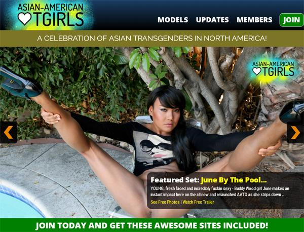 Asian American TGirls Paypal Account